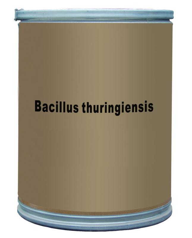 باکتری Bacillus thuringiensis