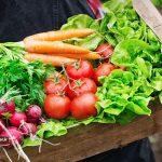 سم زدایی از بدن با رژیم غذایی ارگانیک